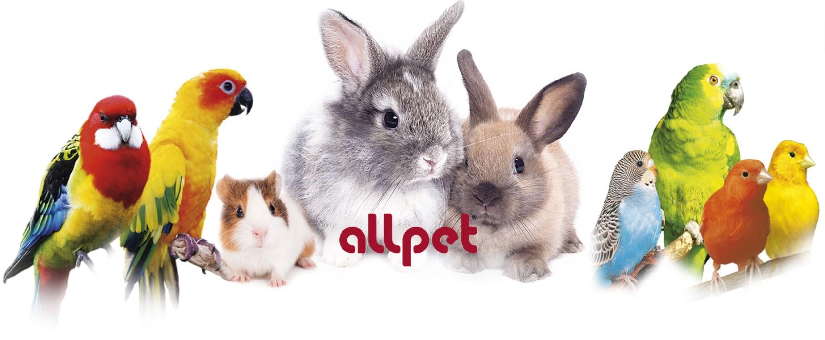 All-Pet
